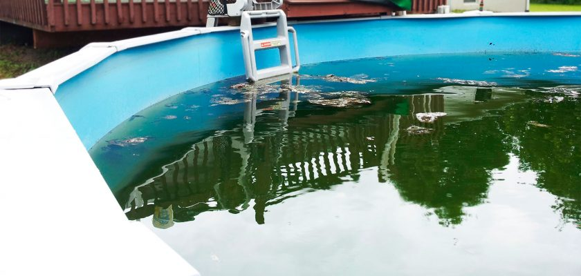 How to clean an above ground pool